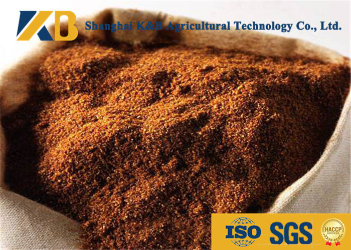 Brown Color Cattle Feed Supplements 60% Protein Content For Livestock Feed
