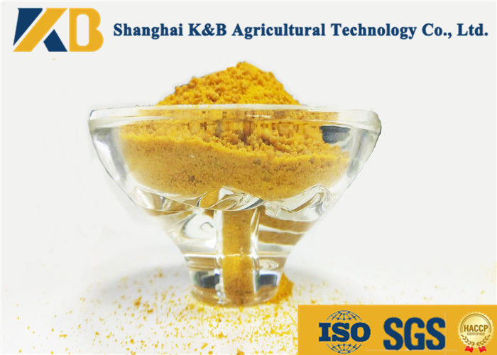 High Protein Grain Origin Corn Gluten Meal Animal Feed For Nutrition Additive