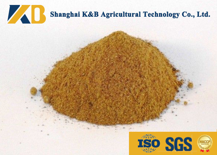 Promote Animal Growth Poultry Feed Products With Fresh Fish Raw Material
